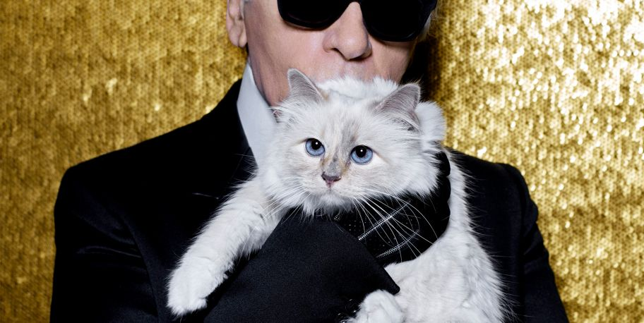 Choupette's New Year's Resolutions